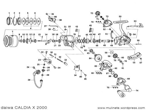 daiwa CALDIA X